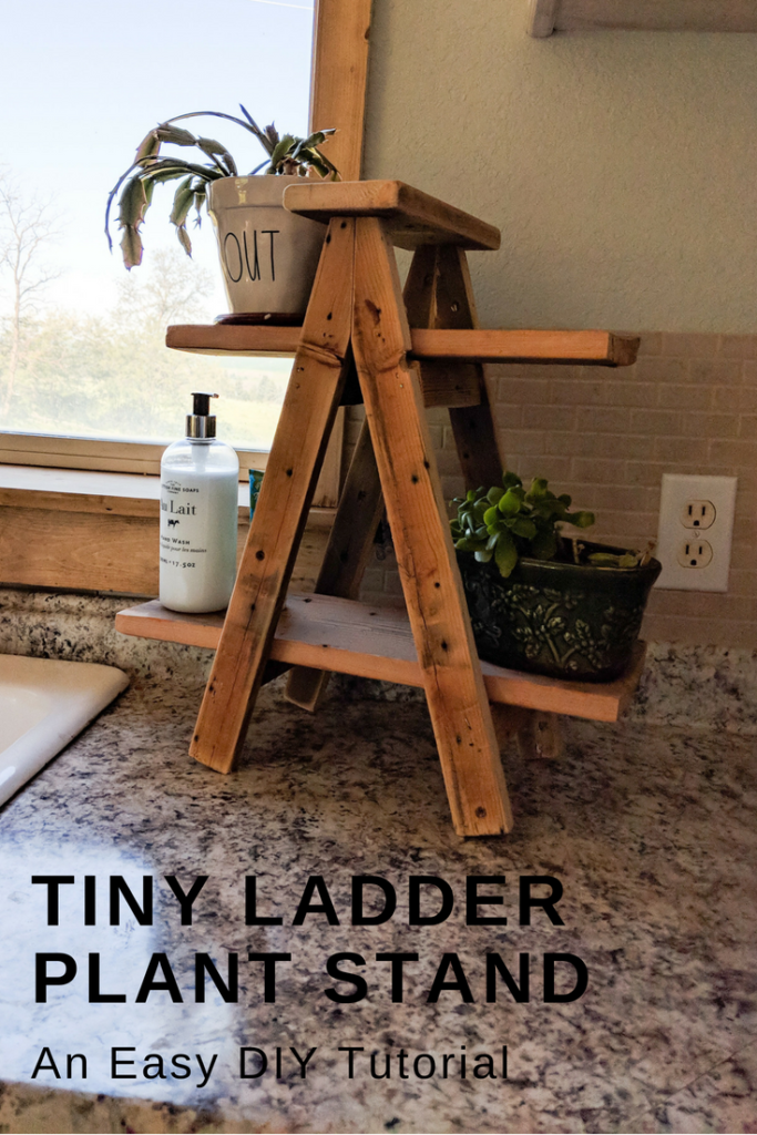 Tiny Ladder Plant Stand My Happy Simple Living